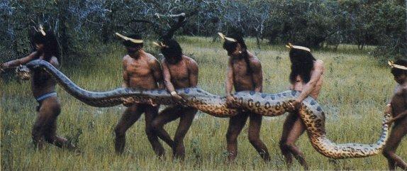 ����� ���� Anaconda01.jpg