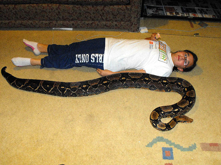 Photo by Ashley of her 8 foot 35 lbs BCI boa.